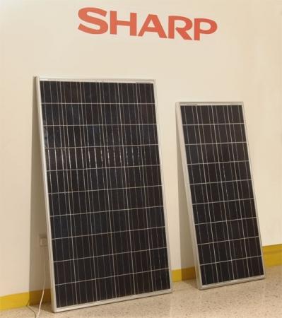 Sharp не продаст бизнес по выпуску солнечных панелей