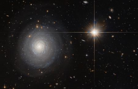 Фото дня: одинокая космическая фабрика звёзд