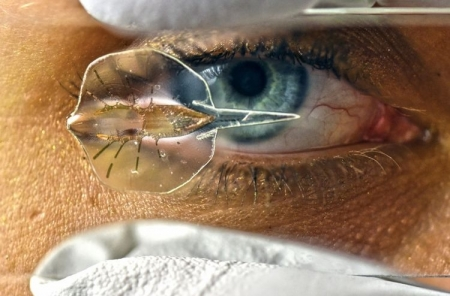 Создан робот-скат с золотым скелетом и мышцами крыс