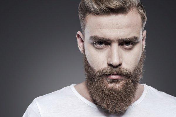 Ученые пояснили, почему мужчинам с бородой легче дается бизнес