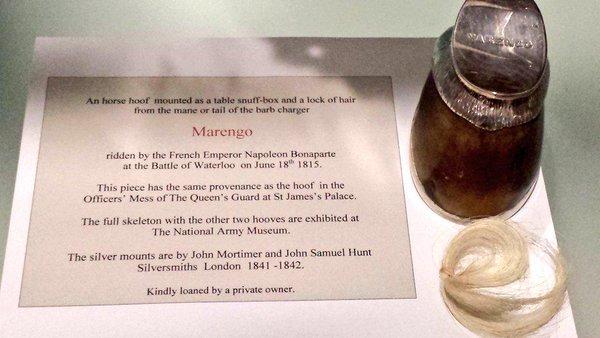 В Великобритании нашли утерянные копыта коня Наполеона Бонапарта
