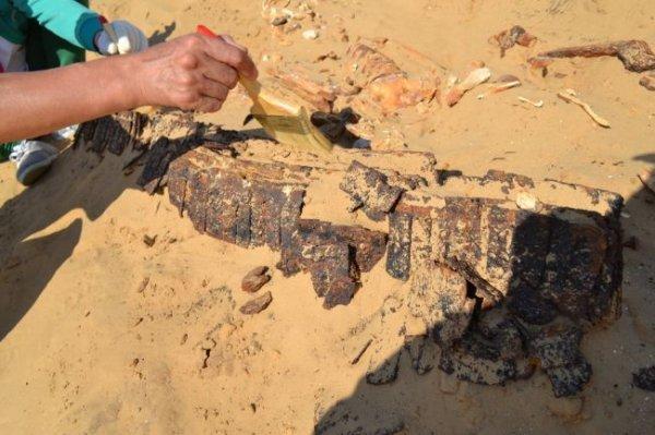 Археологи нашли в Китае древние захоронения гуннов