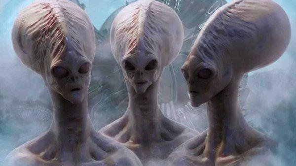 Учёные назвали 5 причин, почему не стоит искать инопланетян