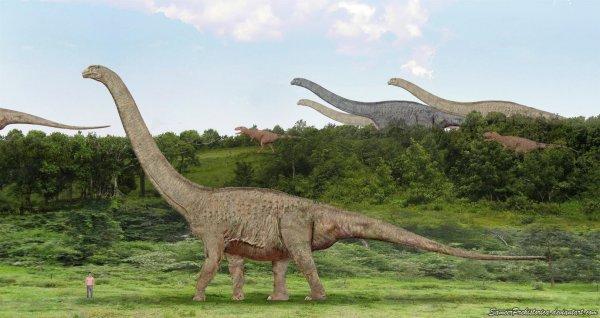 В Канаде показали мумию погибшего 110 млн лет назад динозавра