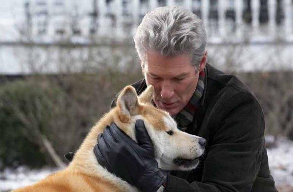 Собаки могут говорить с человеком – Ученые