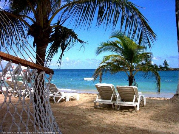 Пляжный отдых может привести к преждевременной смерти - Ученые