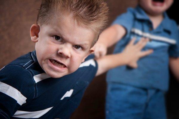 Ученые: Склонность детей к жестокости вызвана генами