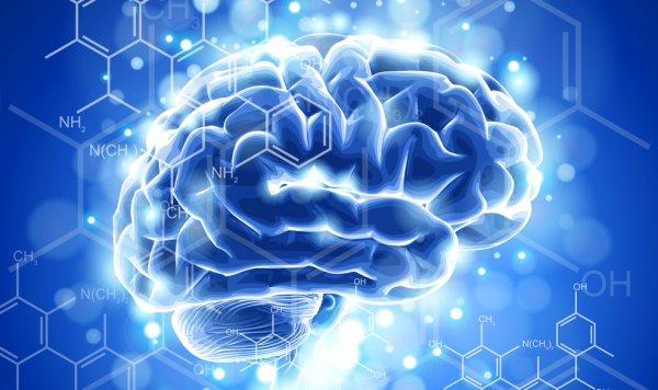 Ученые: Электростимуляция для здорового мозга бесполезна