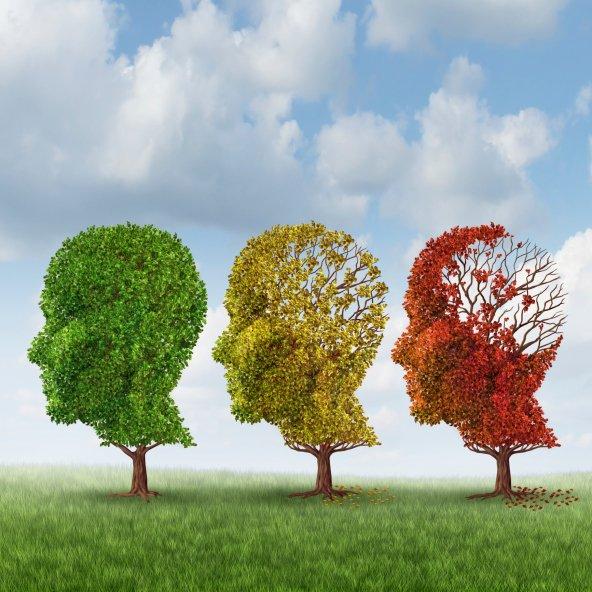 Ученые назвали причины, вызывающие амнезию