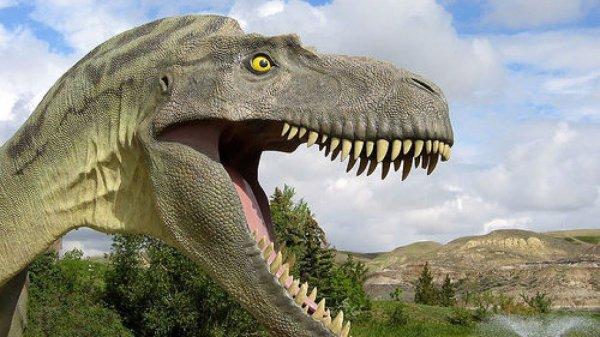 Ученые: Динозавры были обречены на гибель