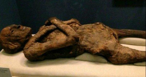 Учёным удалось восстановить ДНК древних мумий