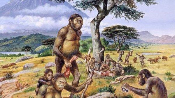 Ученые назвали причину появления современного человека