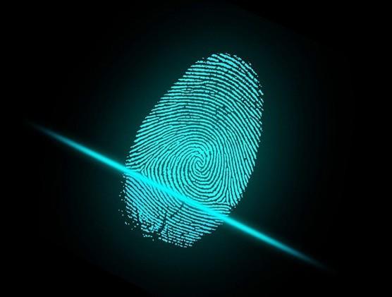 В России создадут биометрическую платформу для идентификации граждан