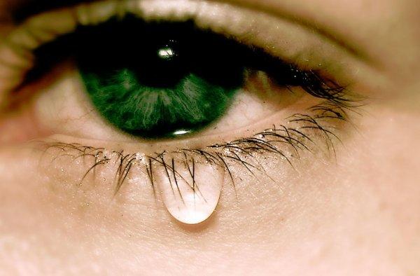 Учёные назвали основные причине слезоточивости глаз
