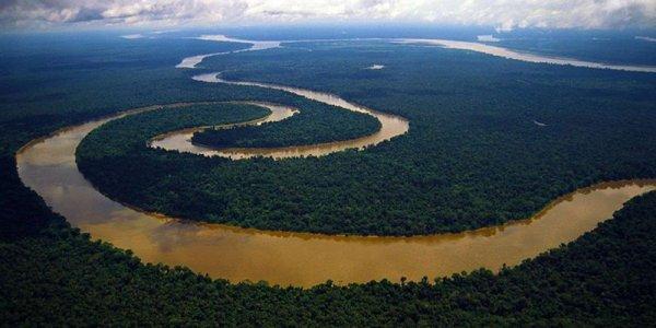 Учёные: Бассейн Амазонки может быть полностью уничтожен
