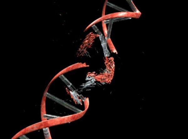 Ученые недооценили роль мутаций в организме человека