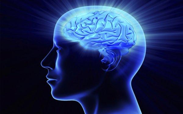 Ученые установили связь между забывчивостью и высоким интеллектом