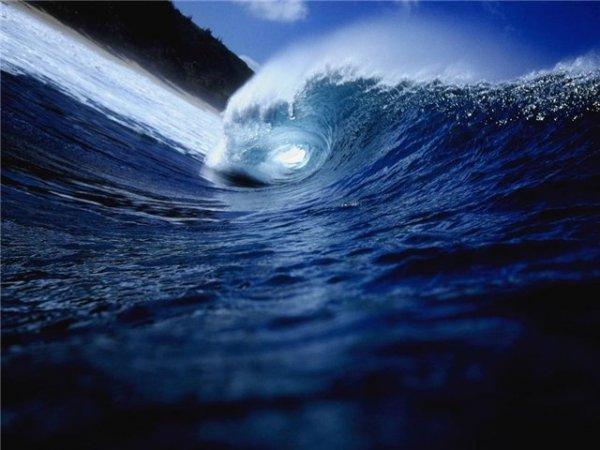 Ученые рассказали о страшной катастрофе, ожидающей мировой океан