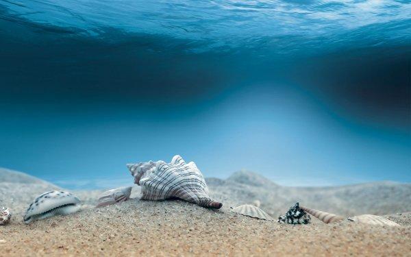 Британские исследователи спустились на глубину четырех километров в воды Северного Ледовитого океана