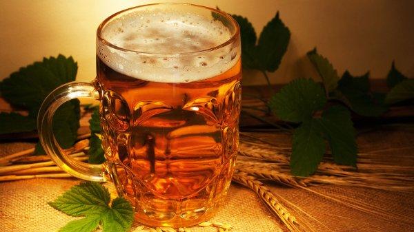 «Полезное пиво» из Сингапура не вызвало доверия у диетологов