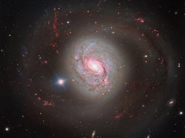 Астрономы сделали снимок галактики M77