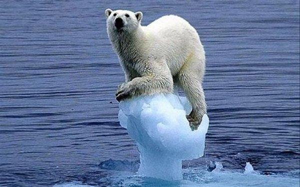 Потепление в российской Арктике спровоцировало похолодание в США и Канаде