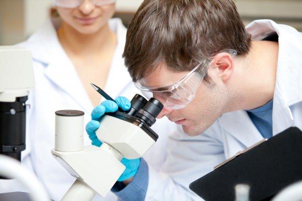 Нижегородские ученые создали средство для остановки крови за секунды