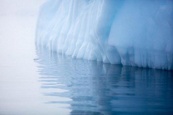 Российские ученые называют сенсацию с отколовшимся айсбергом фейковой