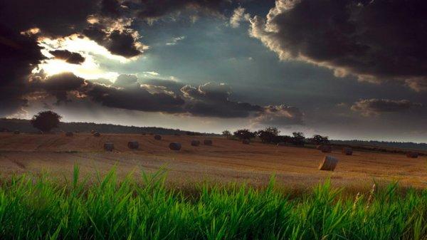 Ученые научатся предсказывать погоду на 10 лет вперед