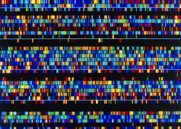 Открыты новые пределы функциональной части человеческого генома