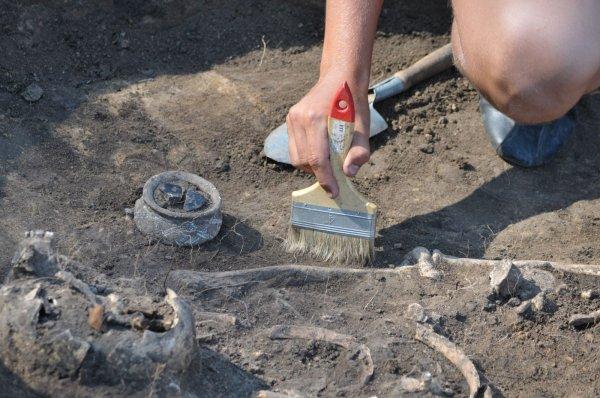 В Китае во время раскопок найдены колесницы VIII-V века до нашей эры