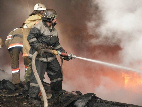 Ученые из Перми создали мину для борьбы с пожарами
