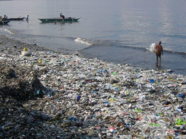 Российские ученые раскрыли маршруты «миграции» мусора в Балтийском море