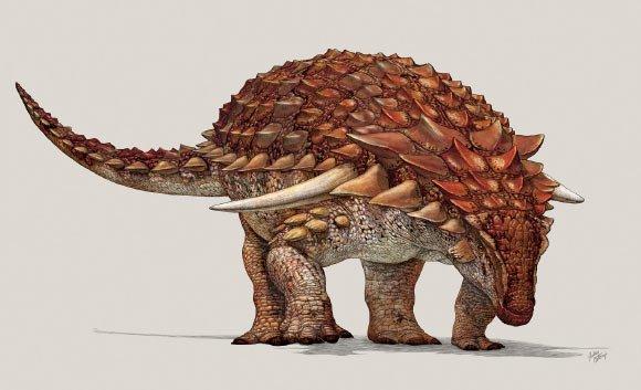 Археологи откопали костяную броню «самого неуязвимого» динозавра