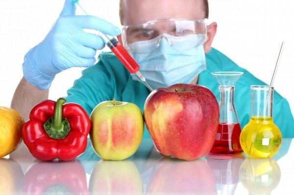 Израильские ученые опровергли миф о вредности продуктов с ГМО