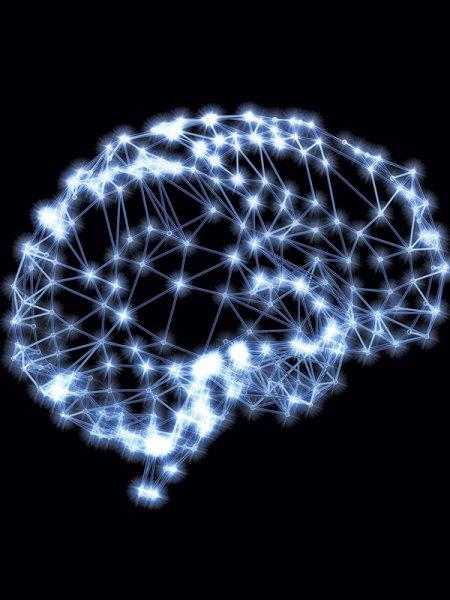 Ученый рассказал о нейронах, с помощью которых люди чувствуют чужую боль