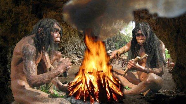 Ученые опровергли принятую теорию эволюции человека
