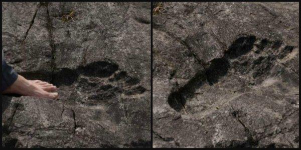 Найденный в Китае огромный след доказывает существование великанов — Конспирологи