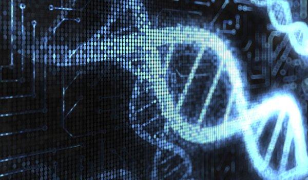 Ученые сделали из ДНК компьютерный вирус