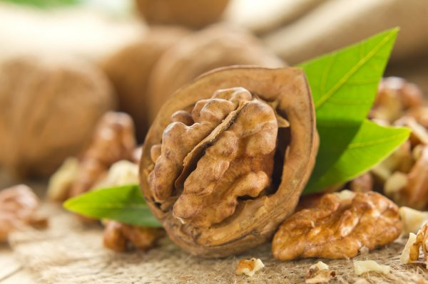 Грецкие орехи контролируют аппетит людей с ожирением