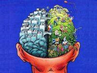 Слова и мимику обрабатывают разные полушария мозга с разной скоростью