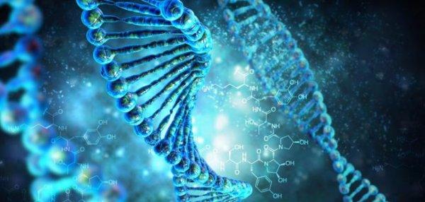 Ученые: Космическое излучение вызывает мутацию человеческого организма
