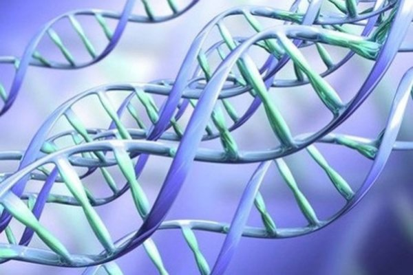 Ученые научились делать в графене нанопоры нужно размера