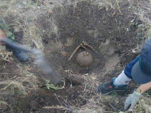 В центре Ростова обнаружили уникальный жертвенник меотов