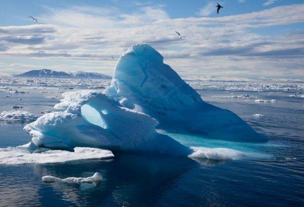 Ученые из России создадут роботов для добычи природных ископаемых в Арктике