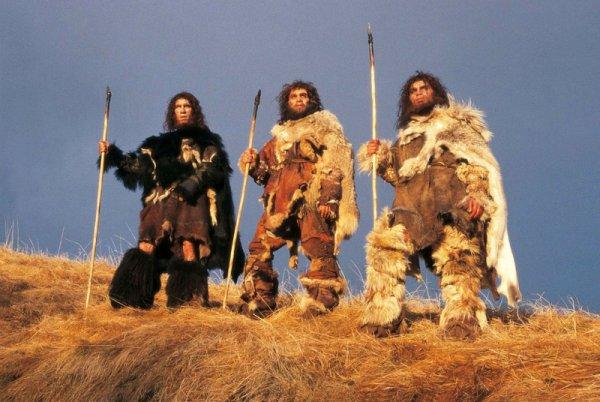 Ученые впервые добыли смолу по способу неандертальцев