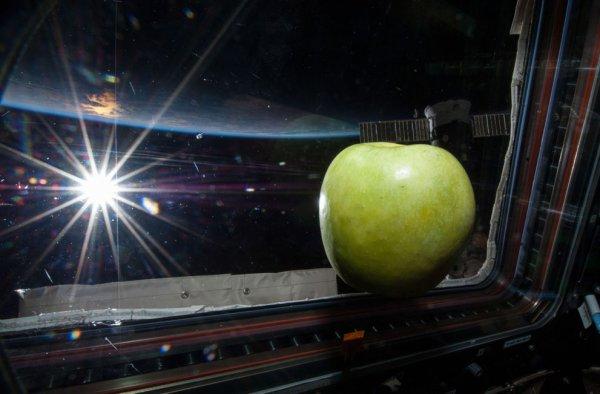 Экипаж МКС прятался в укрытии из-за мощной вспышки на Солнце