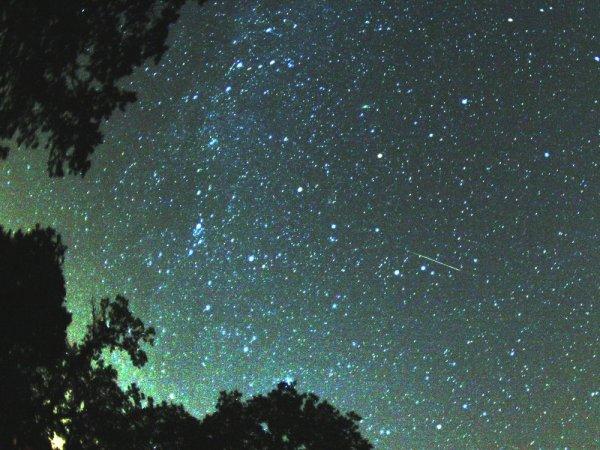 Астрономы объяснили природу НЛО над Петербургом: Правду ли нам говорят ученые об «интересном явлении»?