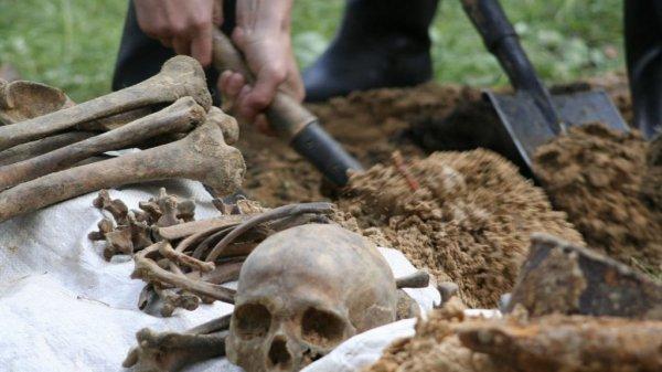 Ученые выяснили природу первого реального «геноцида» в Европе