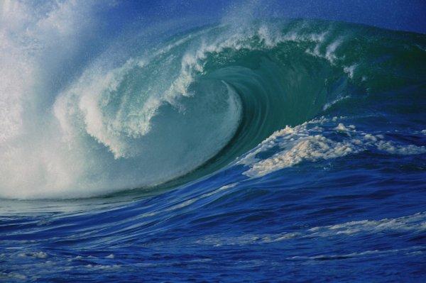 Ученые заявили о нахождении Мирового океана на грани катастрофы из-за таяния льдов